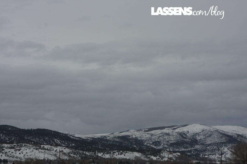 Rocky Mountains of Colorado, Lassen's Natural Foods and Vitamins, Lassen's, Lassens, Lassen's Kombucha